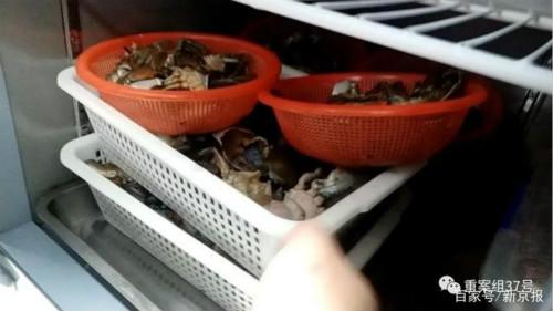 """卧底网红餐厅""""胖哥俩肉蟹煲"""":大量使用过期食材,隔夜死蟹充当活蟹卖"""